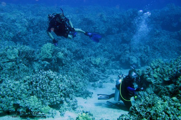 Kirk and Deb explore the reef at Mahukona