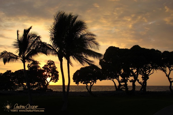 Sunset seen through the trees of a resort at Waikoloa, Hawai'i