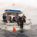 Kohala Diver
