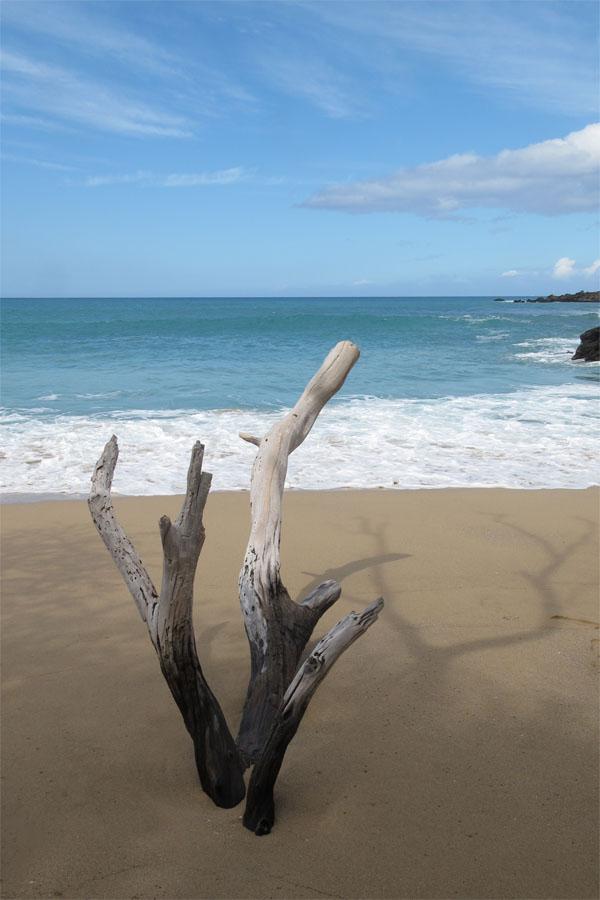 Waialea Bay