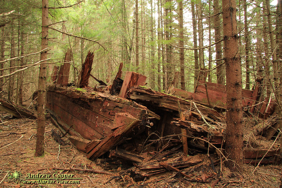 Barges in the Woods