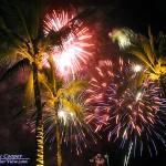Fireworks over Palm Trees