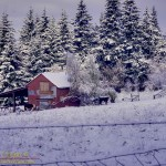 Jerry's Barn