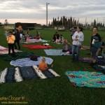 Blanket Field