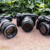 A trio of EOS-M's, including the original M, the M3 and the M5 (left to right)