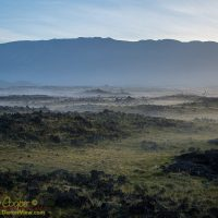 A low ground fog covers the hollows with Mauna Kea in the background