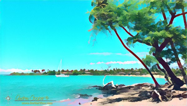 Anaehoʻomalu Bay
