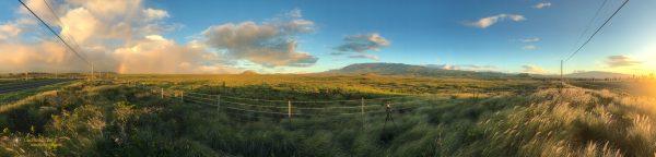 Waimea Plains Panorama