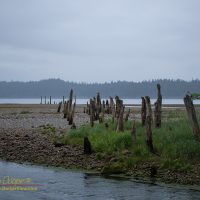 Old pilings across the sand and gravel from Gypsum Creek into Iyoukeen Cove