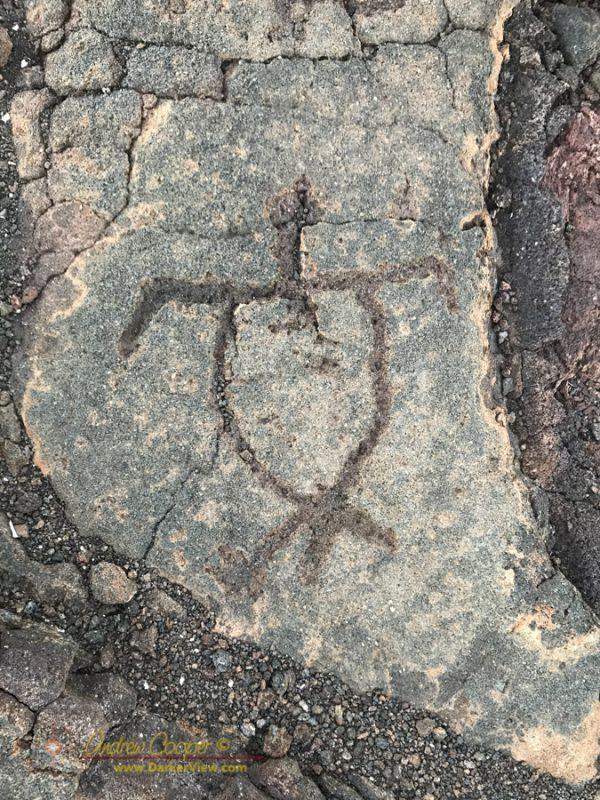 Honu Petroglyph