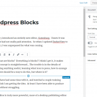 The new Gutenburg editor introduced with WordPress 5