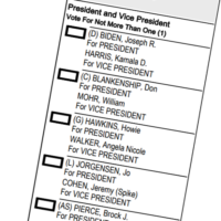 2020 Hawaii Ballot